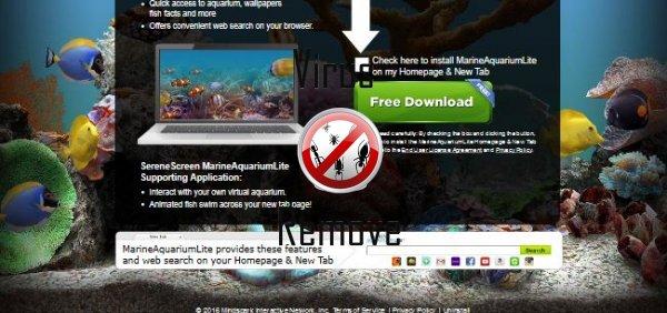 marine aquarium lite